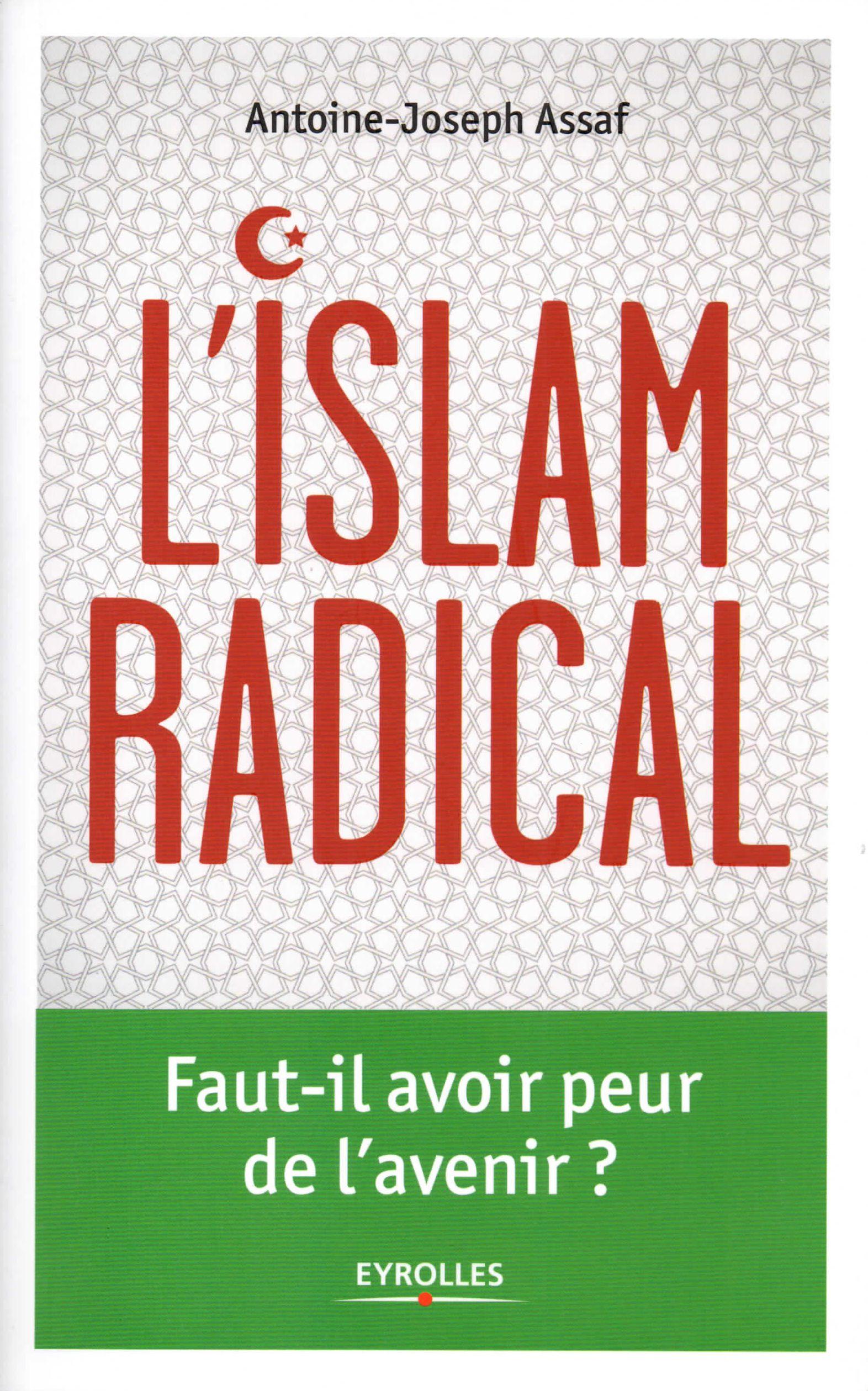 L'Islam radical. Faut-il avoir peur de l'avenir ? Couverture du livre